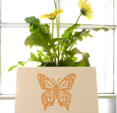 butterfly mother's day card $4
