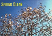 spring clean at Vigor + Vim