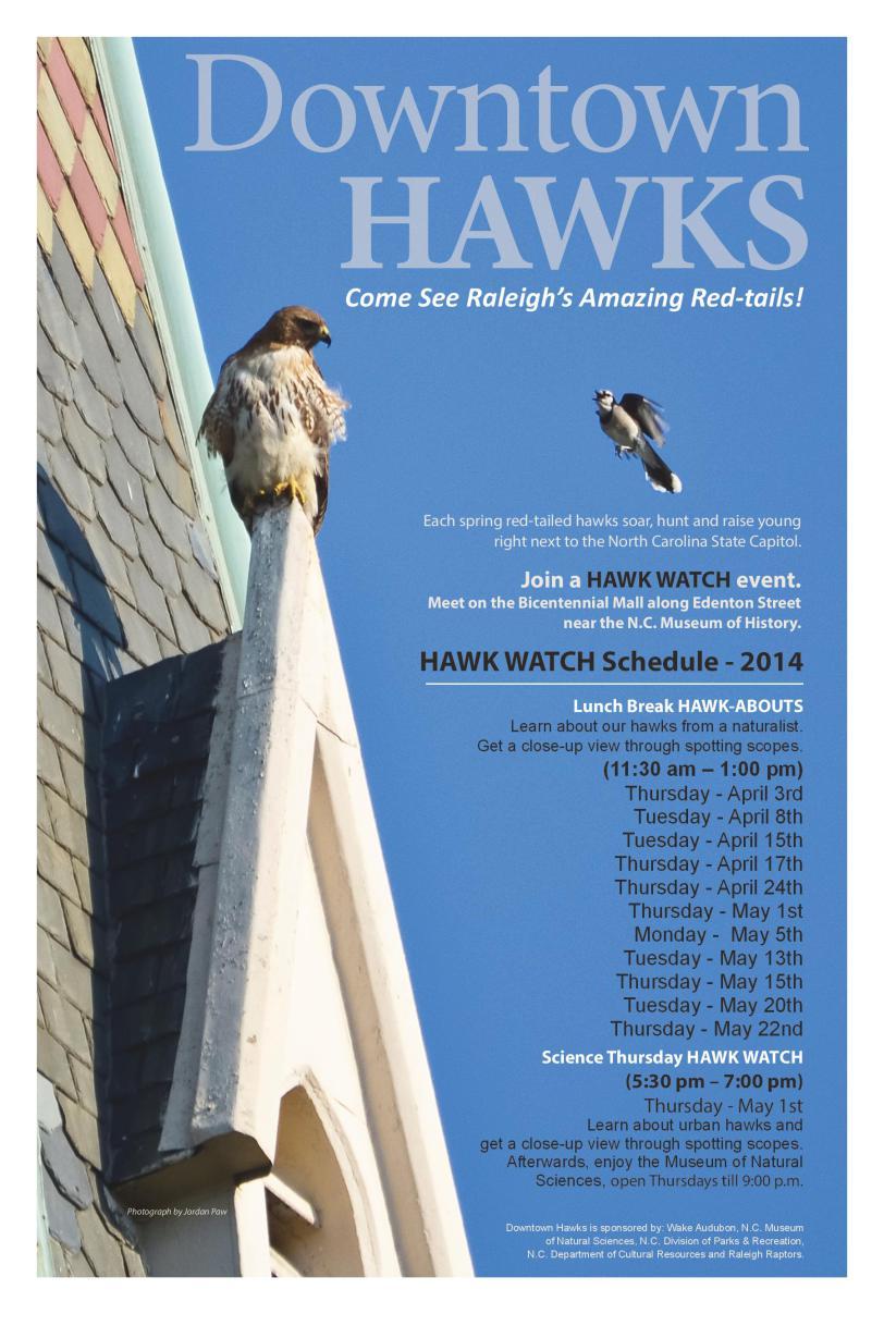 Downtown Raleigh Hawk Watch schedule 2014